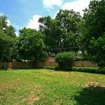 backyard1_500