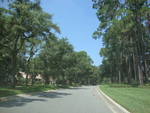 Lake Forest Sanford - Tree Lined Streets