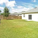backyard_500