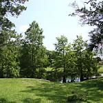 community_landscape