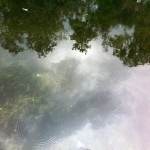 Water at Wekiva Island Longwood FL