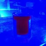 Inside Icebar Orlando - Cocktail