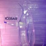 Inside Icebar Orlando - Penguin