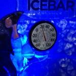 Inside Icebar Orlando - Temperature